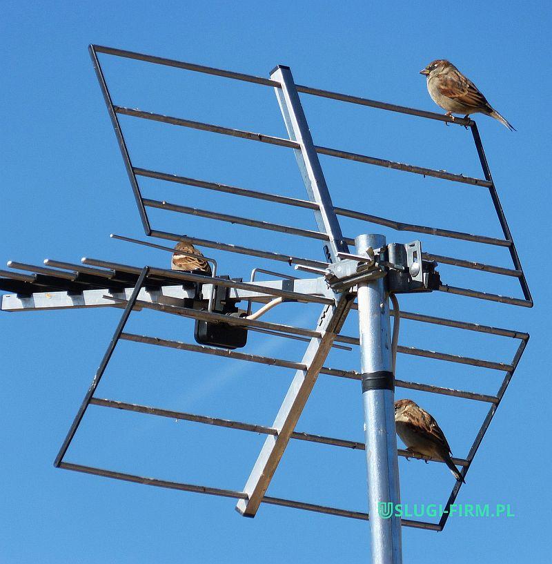 Anteny DVB-T szerokopasmowe